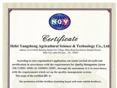 ISO9001质量体系认证证书(英文)