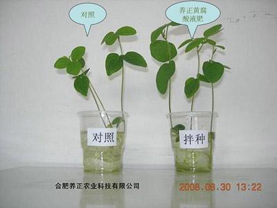 /jishu/tuku/2021/0825/149.html